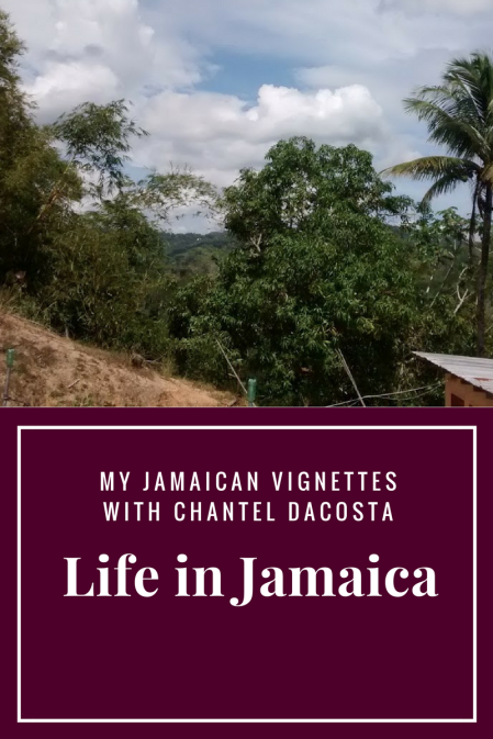 life-in-jamaica-template